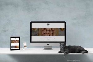 COR Web Design Chester
